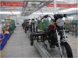 triciclo del carico 200cc con il fronte d'acciaio anteriore del Astuto-Gatto (TR-19)