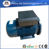 Qualité à grande vitesse et moteur utile supplémentaire inférieur de 220V 3000rpm