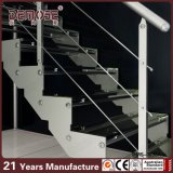 Laminate Glass Treads (DMS-3036)のカスタムSteel Staircase