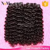 Braziliaanse Haar van het Haar van Bouncy het Krullende Één Dag die Hete Natuurlijke Krullende Weefsels verschepen