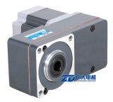 BLDC Motor mit L Typ Getriebe 200~1500rpm, 2000rpm, 2500rpm