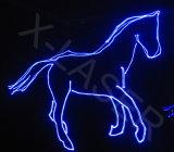 Luz da cor cheia da animação da mostra do laser do clube