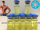 완성되는 기름 액체 Methandienone Dianabol 50 Mg/Ml 주사 가능한 신진대사 스테로이드