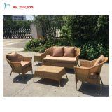 H, stellte im Freien Foshan-modernes Möbel-Freizeit-Rattan-Sofa 2016 ein