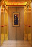 Titangold und geätztes Spiegel-Passagier-Höhenruder