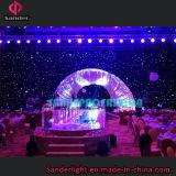 熱い結婚式、イベント、青および白色電球が付いている棒装飾のためのショーによって使用されるLEDのStarlitカーテン