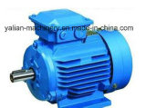 Alta qualidade do motor de série Y2 elétrico da prova da água