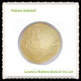 Polvo orgánico natural del extracto de Yacon de la alta calidad