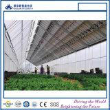 중국에 있는 가장 큰 BIPV 태양 모듈 공장