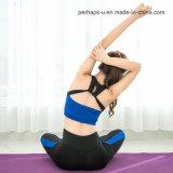 Pantalon respirable de yoga de procès de forme physique en deux pièces neuve de soutien-gorge de sport