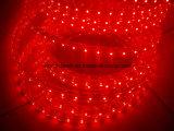 Luz de la cuerda roja del voltaje 110V/220V de la cuerda cuadrada del LED Luz-Alta (HVSMD-3528-60, HVSMD5050-30)