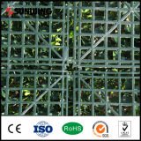 PVC Coated Artificial Fence Panel di New Design del giardino per Home Decoration