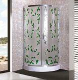 Clôture de douche en verre modelé (ADL-8048)