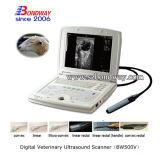 Varredor veterinário do ultra-som dos produtos do equipamento veterinário