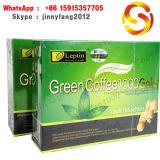 コーヒー1000年を細くするLeptinの緑