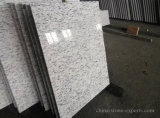 Floor/Wall DecorationのためのGardenia White Flow Granite Floor Tile