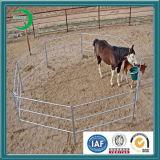 Galvanización Yard Fencing para Live Cattle