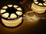 Ce contabilità elettromagnetica LVD RoHS due anni di garanzia, corda flessibile dell'indicatore luminoso di striscia del LED/LED