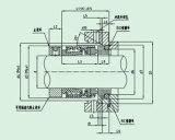 Светлое механически уплотнение с одиночной весной (HQ 502)