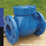 Api 6D Industrial Flange o Wafer Cast Iron o Forged Stainless Steel Ball o Swing Check Valve
