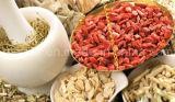 Mispel-Gewicht-Steuerung Wolfberry getrocknetes Goji