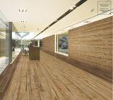 Italienische Entwurfs-Badezimmer-Fußboden-Fliesen für kleine Häuser