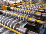 Tipo popolare rullo del pavimento della piattaforma di Trapzoidal che forma macchina