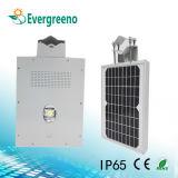 Straßenlaterne-im Freienbeleuchtung der Miniform-integrierte Solar-LED