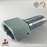 Caber de friso com o zinco chapeado, fêmea métrica assento 20711 do cone de 74 graus (T)