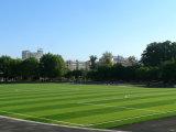 Monofil het Kunstmatige Gras van de Voetbal met Lijn