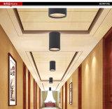 2016 горячая продавая напольная потолочная лампа, IP54