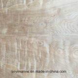 madeira compensada natural do vidoeiro de 9*1220*2440mm para a classe Nc da decoração Cp/C