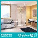 アルミ合金フレーム(SD207N)との熱い販売のHingerのシャワー機構