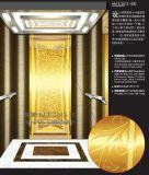 Ascenseur de Roomless de machine (ascenseur de passager de LMR)