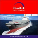 Frete de mar de LCL de China a Italy da porta de Genoa