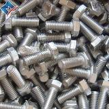 Parafuso do Hex do aço inoxidável A2-70 A2-80