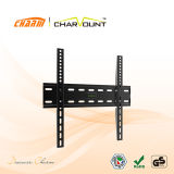 Fixed Style Metal Stand de TV / Suporte de TV / TV Rack (CT-PLB-E813)