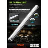 LED 세 배 증거 빛