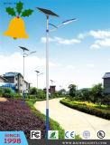 Luz de calle del panel solar LED de la iluminación de la Navidad