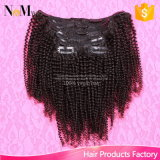 Do Afro indiano do cabelo do Virgin de Alibaba grampo Curly Kinky na extensão do cabelo, 7PCS/Set, grampo de cabelo 120g que faz a máquina