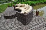最も新しく魅力的な庭の藤の柳細工の半分の円形の部門別のソファーセット