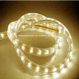Bande transparente imperméable à l'eau de la tension SMD3528 DEL de matériaux de PVC