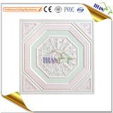 着色された中断された天井のタイル