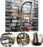 Les têtes du robinet deux de cuisine abaissent le robinet balayé par jet d'évier de cuisine de ressort de nickel