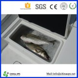 Exllent Quality Kingpear ENV Polyfoam pour Fish Box