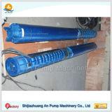 Pomp met duikvermogen 120 Hoofd 45 Meters van de Pomp van het Roestvrij staal M3/Hr