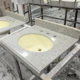 Vanité extérieure solide de salle de bains de bassin de salle de bains personnalisée par constructeur