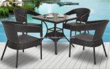 工場本管の製品! 販売のための庭の藤の家具の屋外の家具