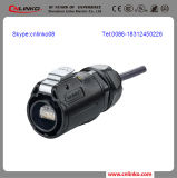 LED Model/Screen/Display를 위한 RJ45 Connectors Bulk Connector 또는 Cat5e RJ45 Connectors/Network RJ45 Connectors