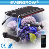 Home Aquarium Tank를 위한 LED Aquarium Light